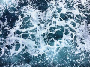 SALT DESTROYS NEGATIVE EDGE POOLS — and even the most mature landscape